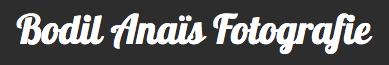 logo bodil anais
